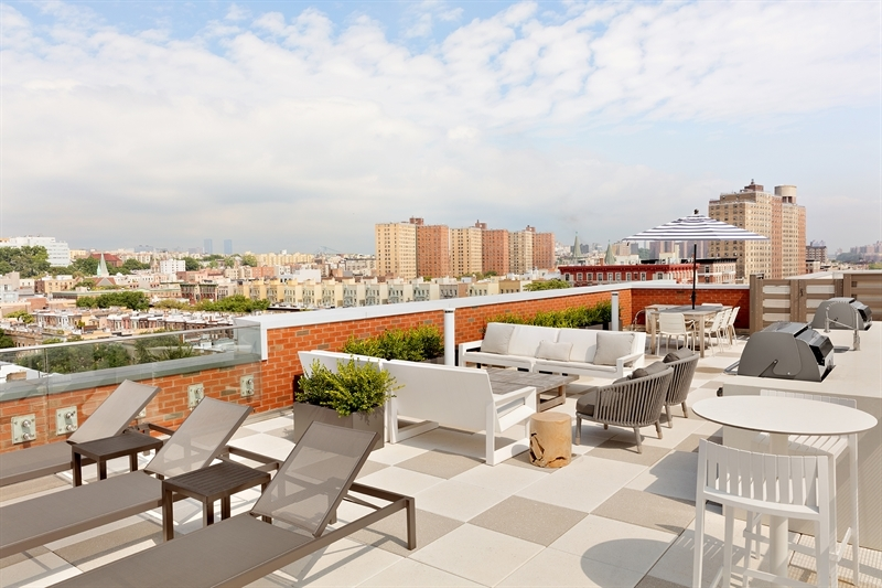 The expansive Rooftop Lounge with open views of Harlem and beyond offers dedicated areas for dining, lounging and grilling.